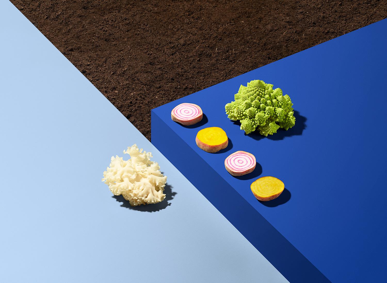 Bite Copenhagen   Food Fair of the Future