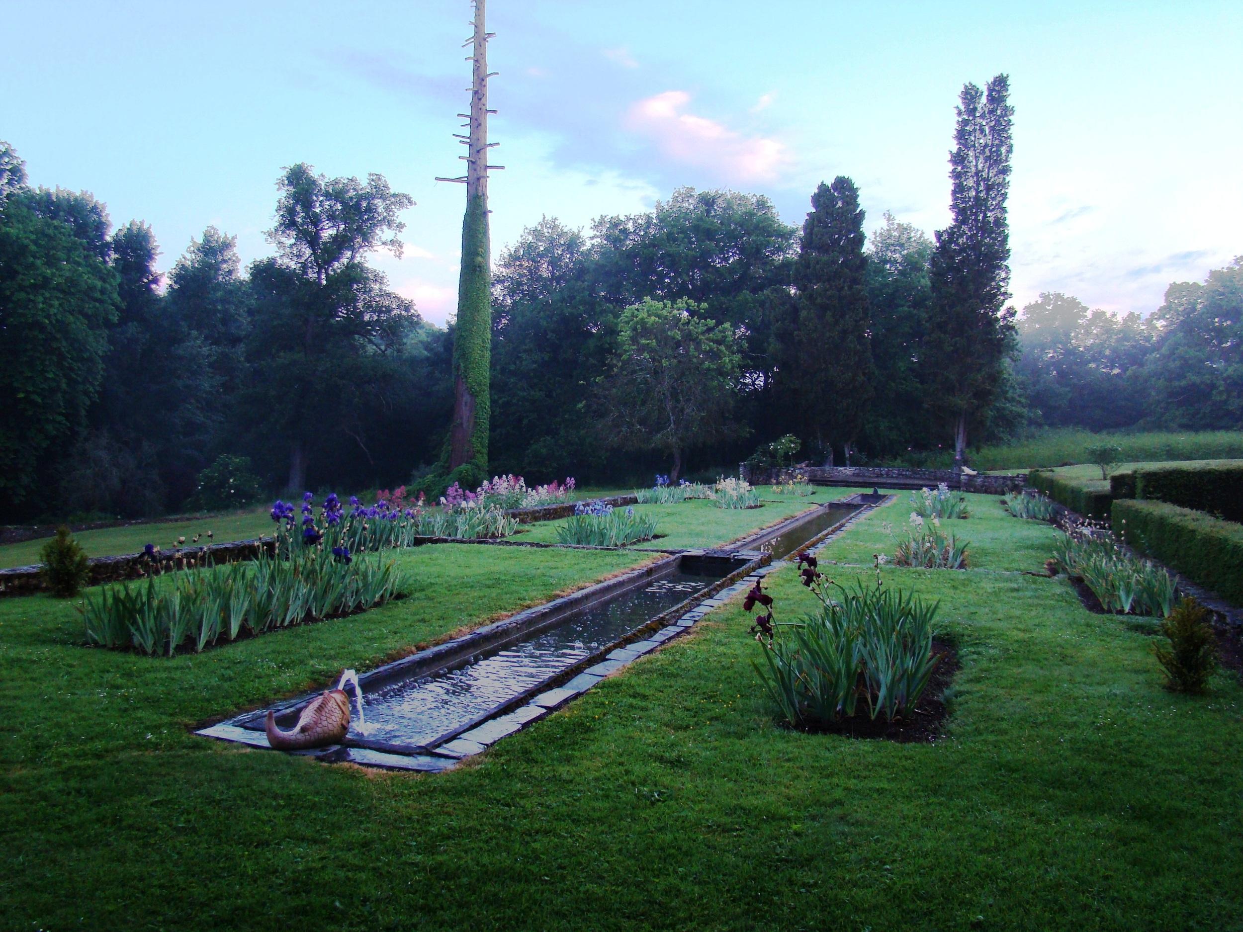 Iris garden.jpg