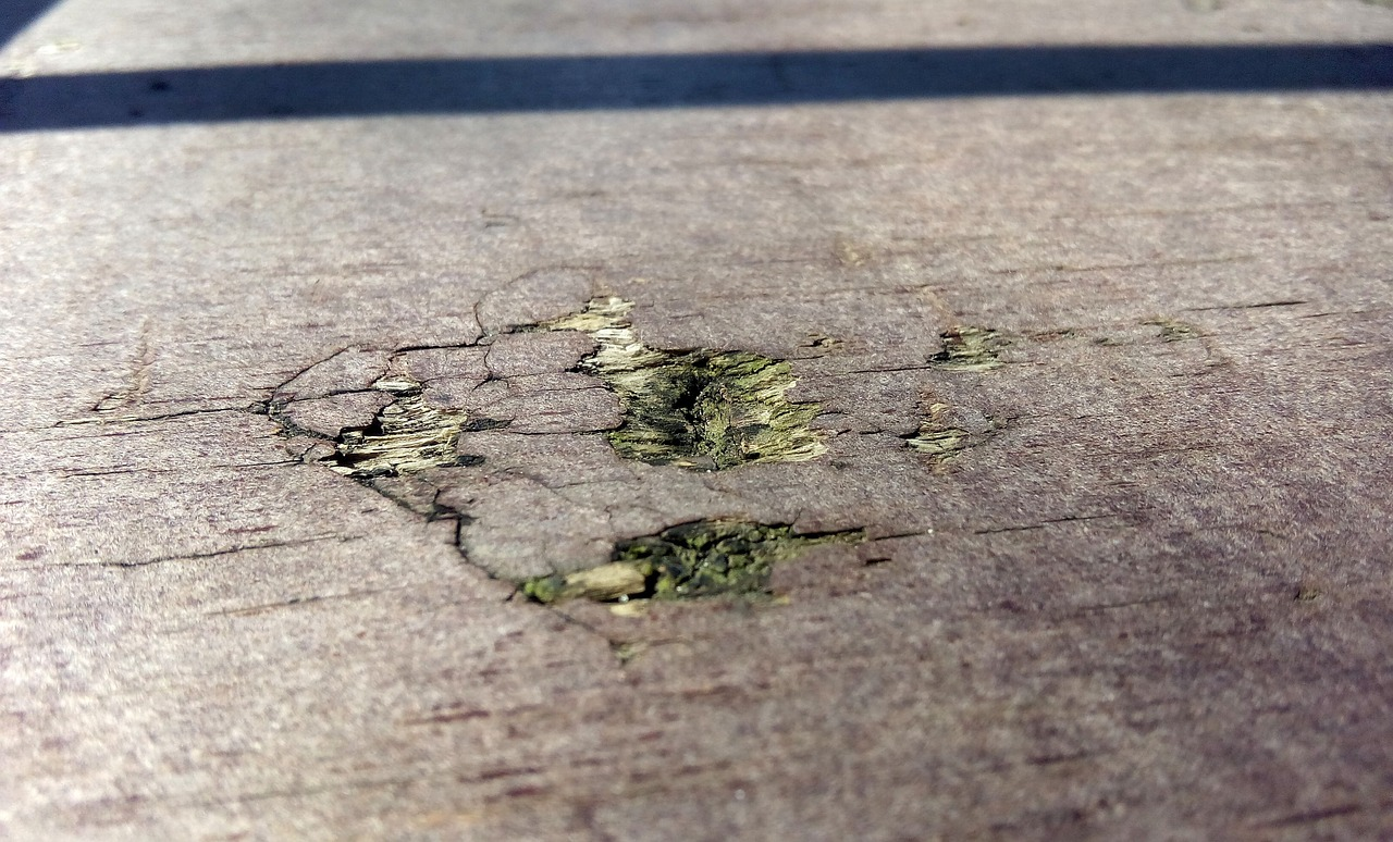 Chlorine bleach is extremely damaging to decking materials and will often make a mold problem worse.
