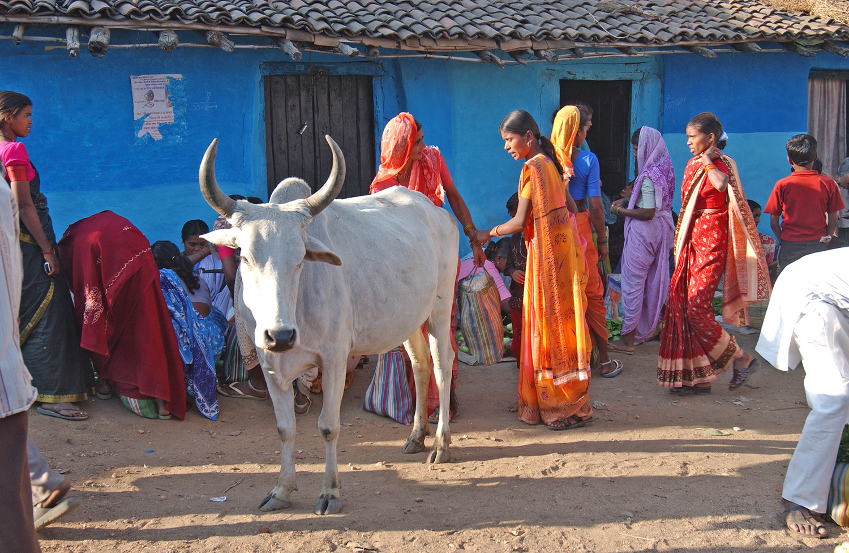 India-046.jpg