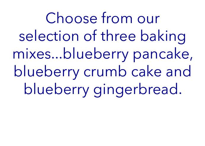 blueberry mixes content.jpg