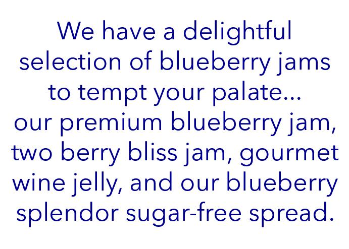 blueberry jams content.jpg