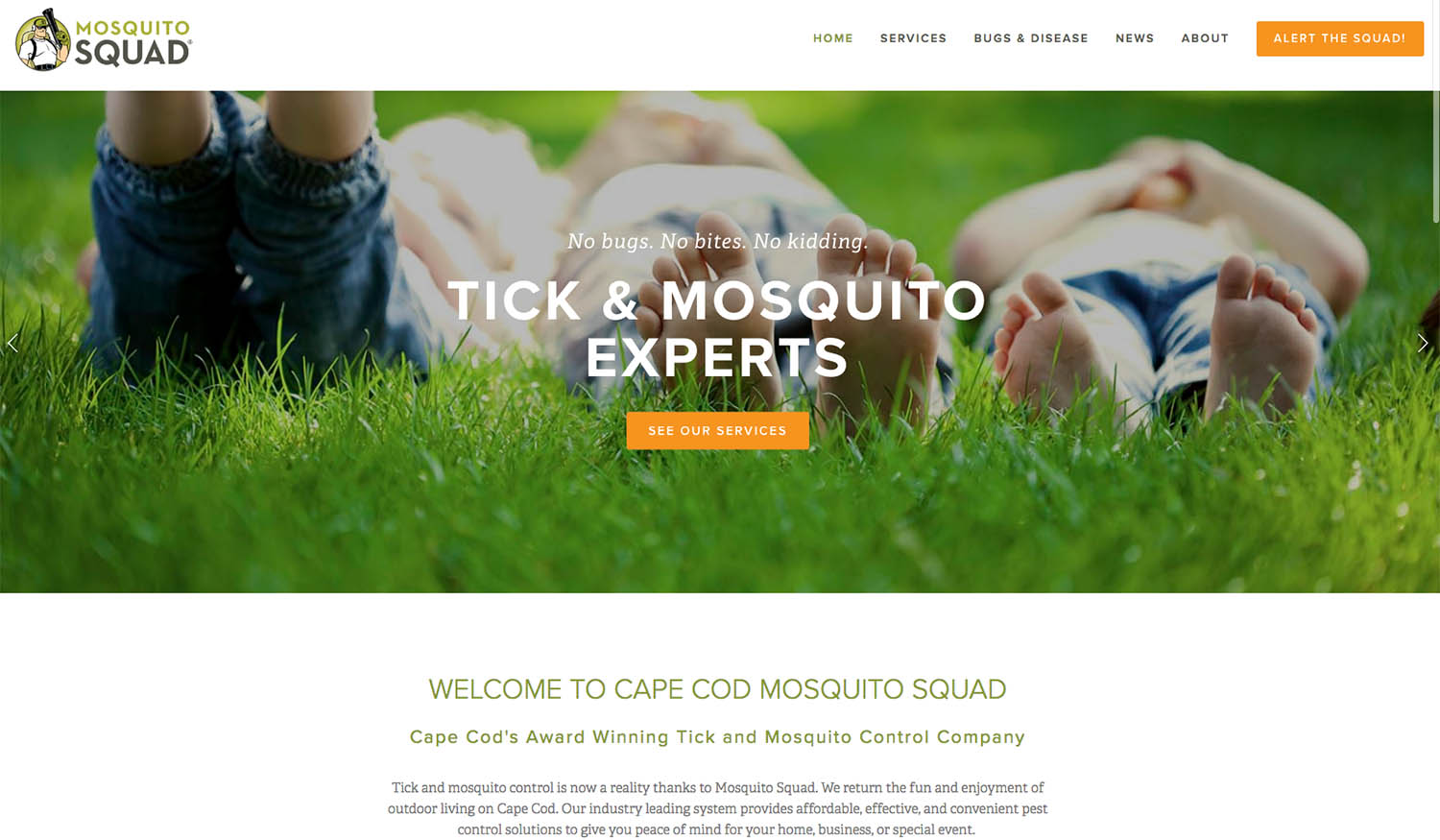 Cape Cod Mosquito Squad wanted to get found on Google in every town it serves.  - CAPECODMOSQUITOSQUAD.COMMenadena helped Cape Cod Mosquito Squad get ranked on Google page one for more than 20 locations on the Cape from Bourne to Provincetown, Martha's Vineyard to Nantucket. Menadena services used:Google AdWordsLocal FoundationSquarespace website design