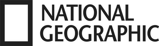 ng-black-logo.ngsversion.d759b95c.png