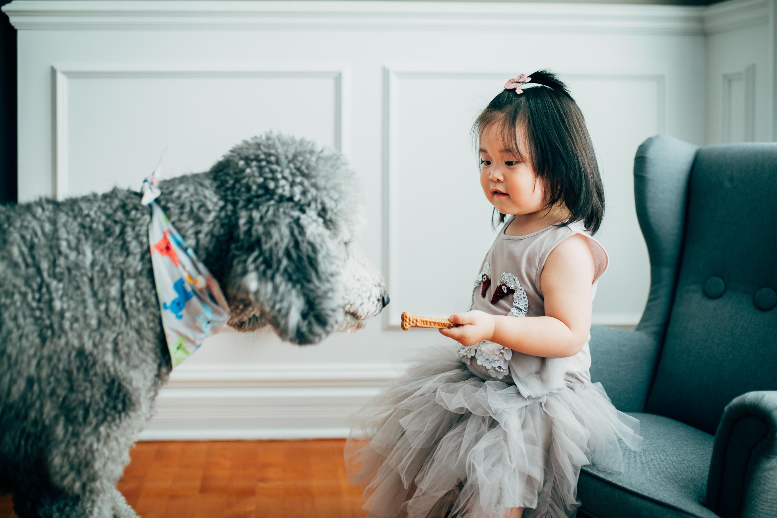 Montreal-children-family-photographer-06.jpg