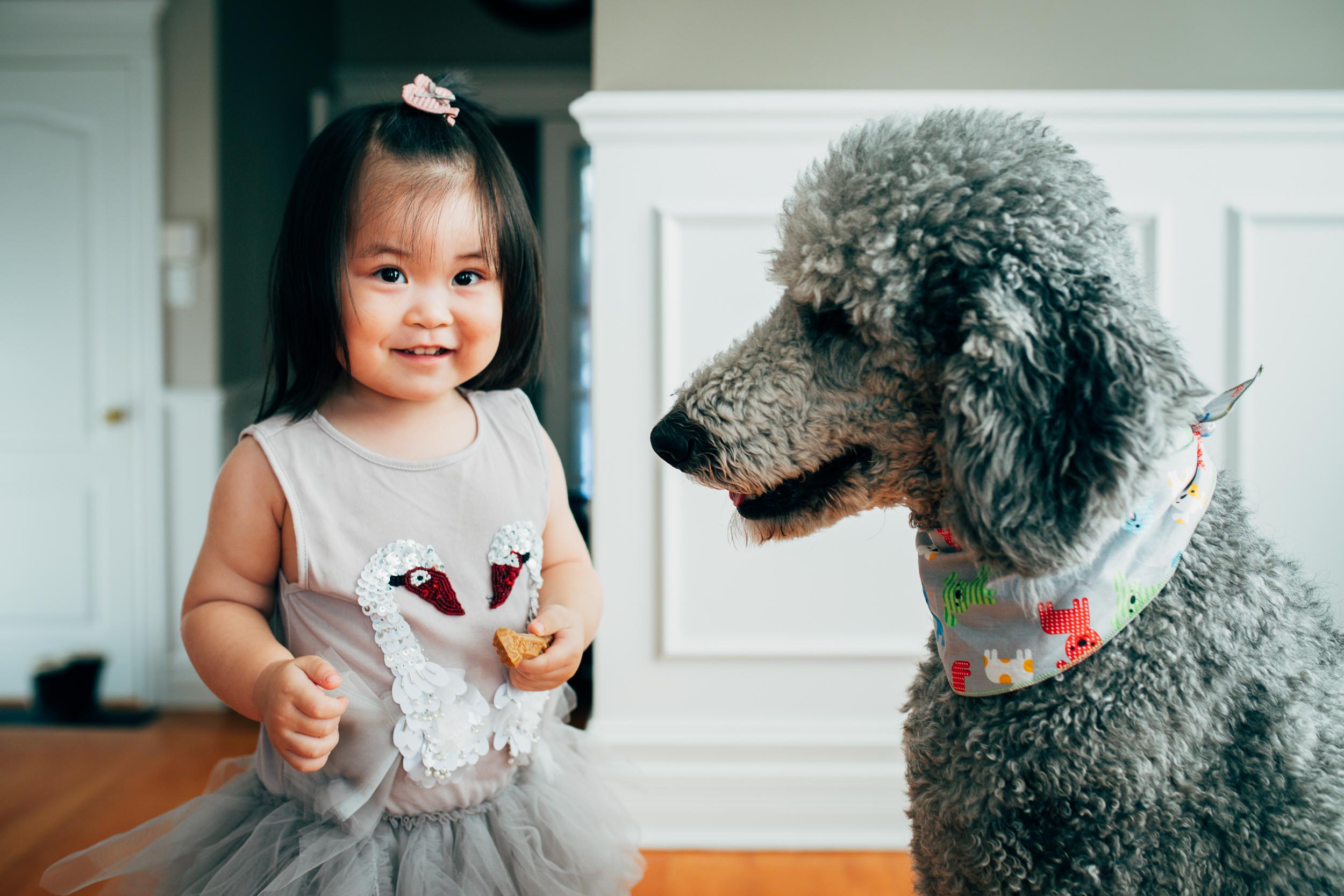 Montreal-children-family-photographer-07.jpg