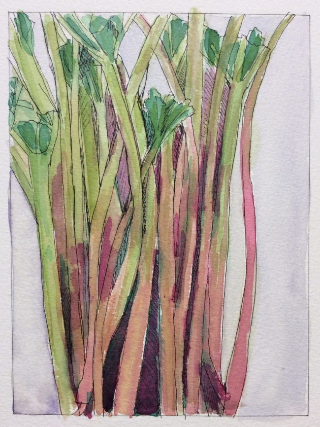 """""""First Rhubarb"""" Art journal, ink and watercolour"""