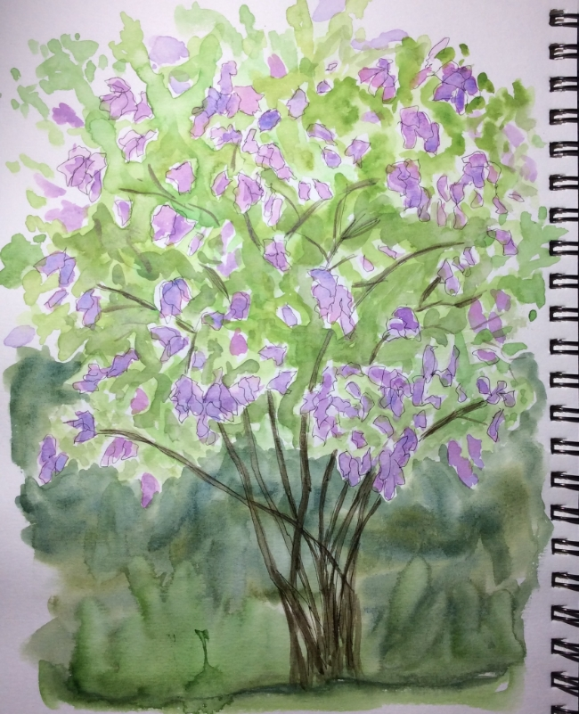 """""""My Lilac Is In Bloom"""" Art journal, watercolour and ink"""