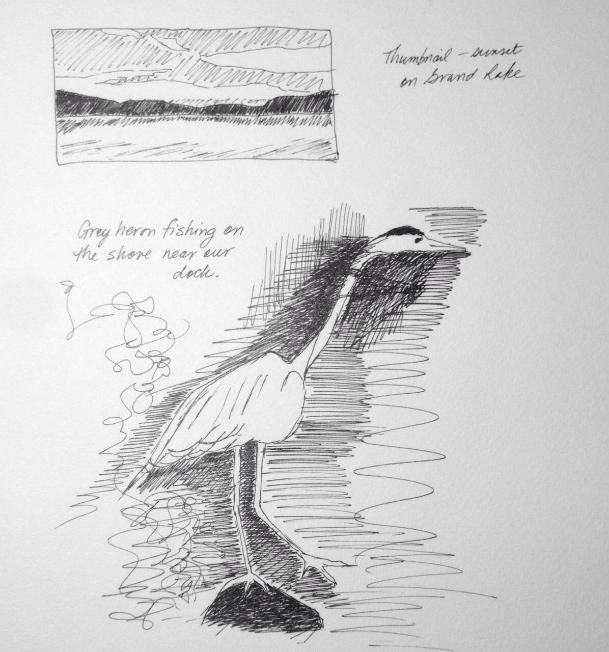 Cottage quickie sketches, art journal, ink