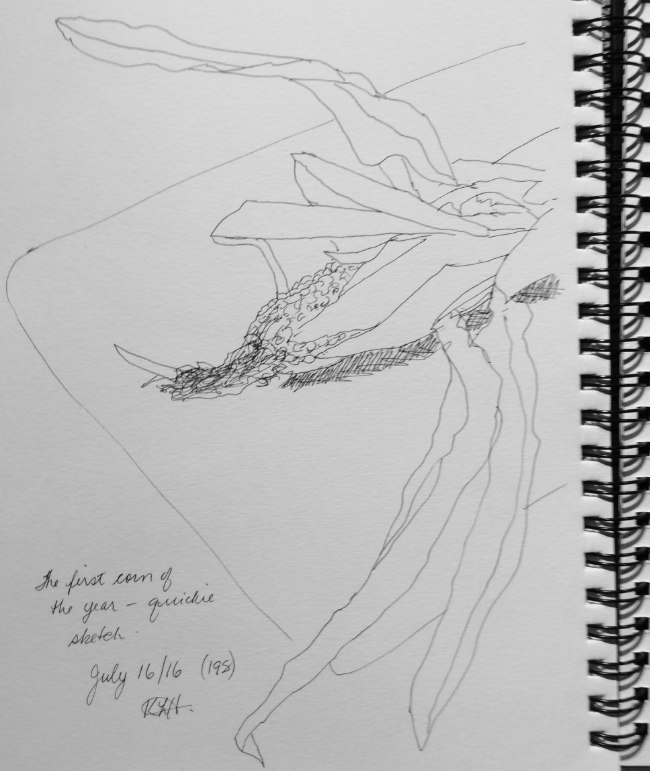 """""""The First Corn of the Year"""". Art journal, ink"""