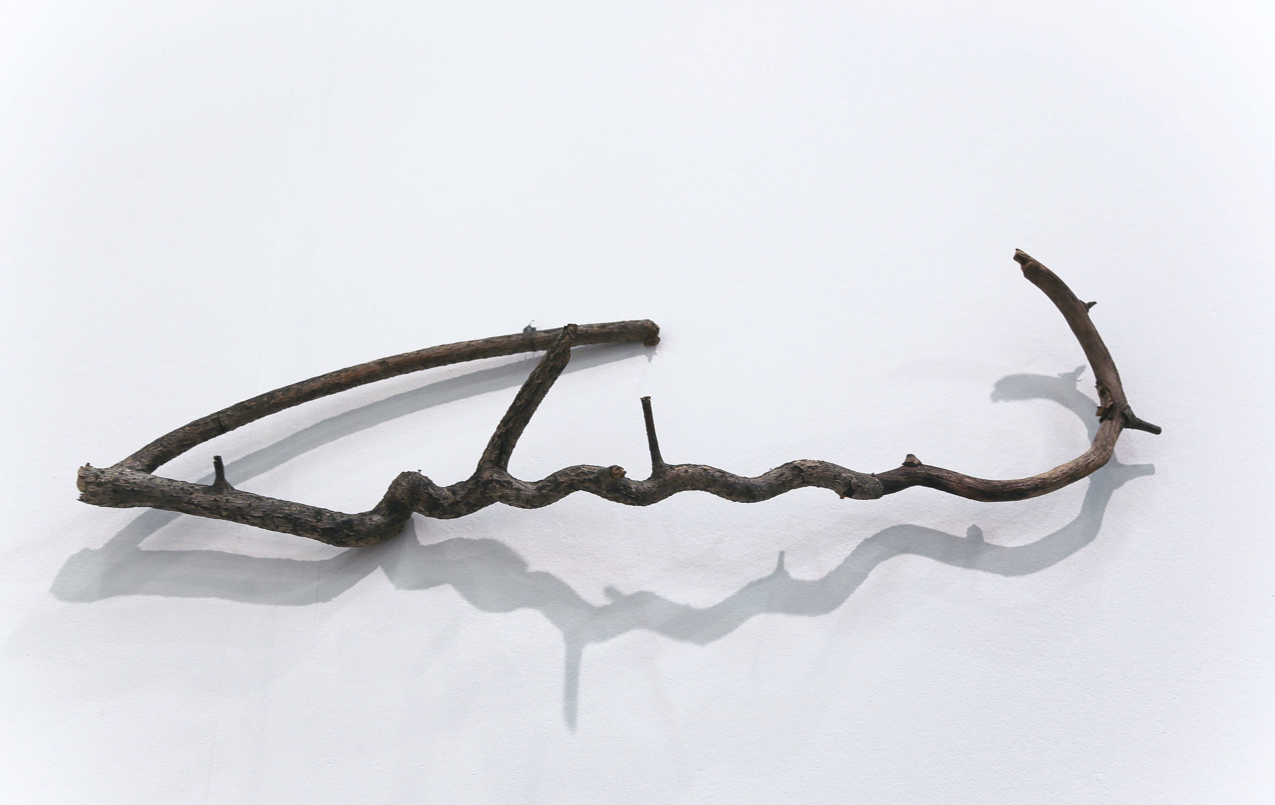 Script: Arabic   2013  Vine  Description:  A found vine acquired in 2013 as part of The Forever Museum archive during the height of islamophobia.