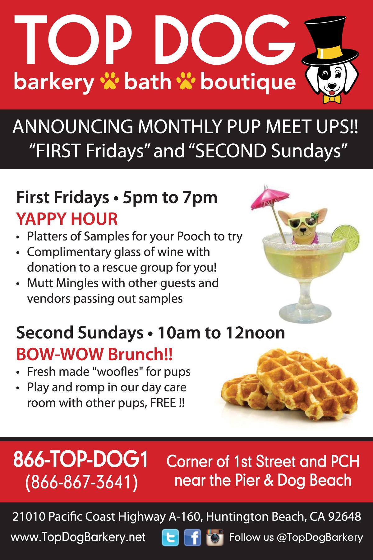 Monthly Pup Meet Ups 2017.jpg