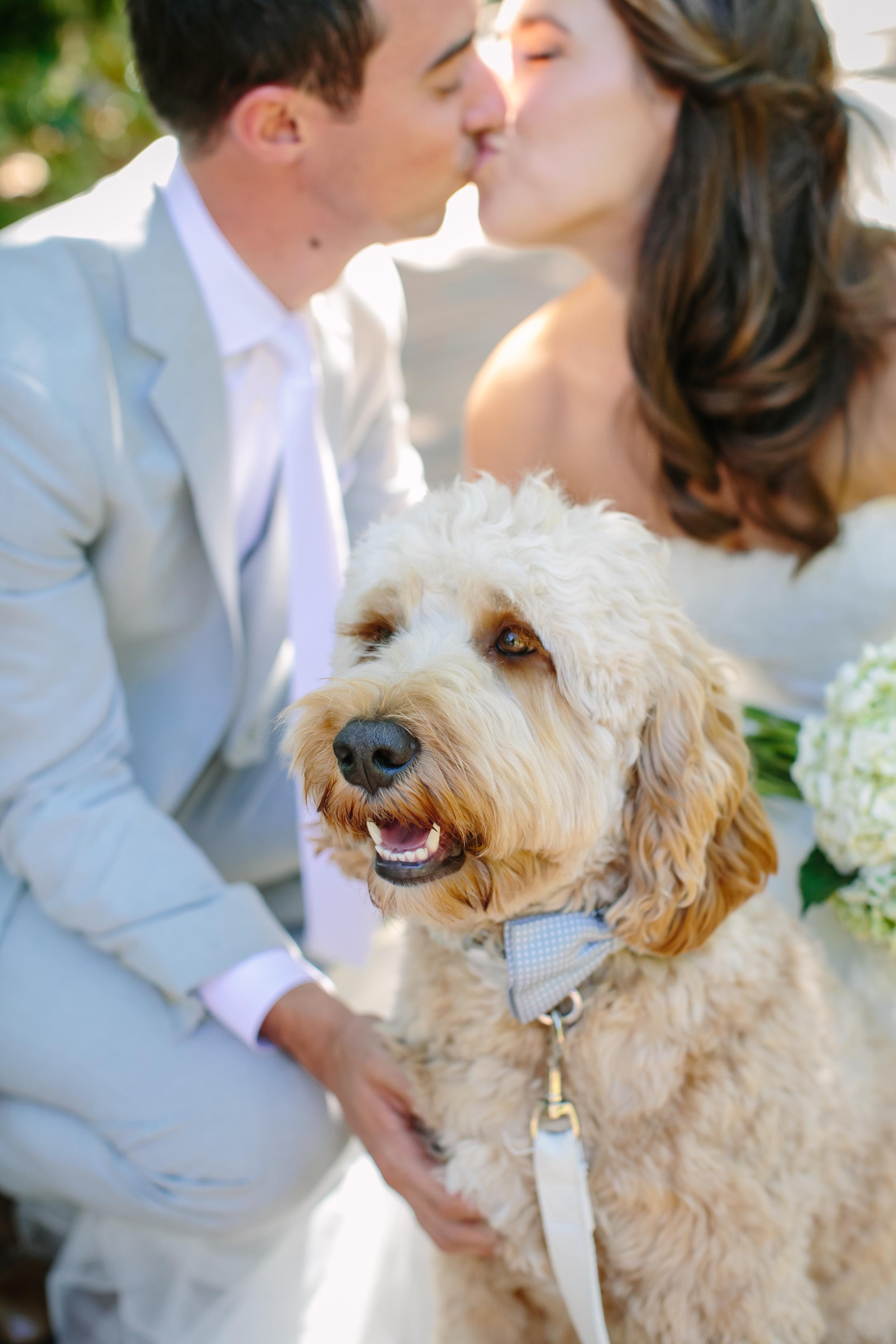 02KR-Wedding-Teasers-Indu-Huynh-Photography.jpg
