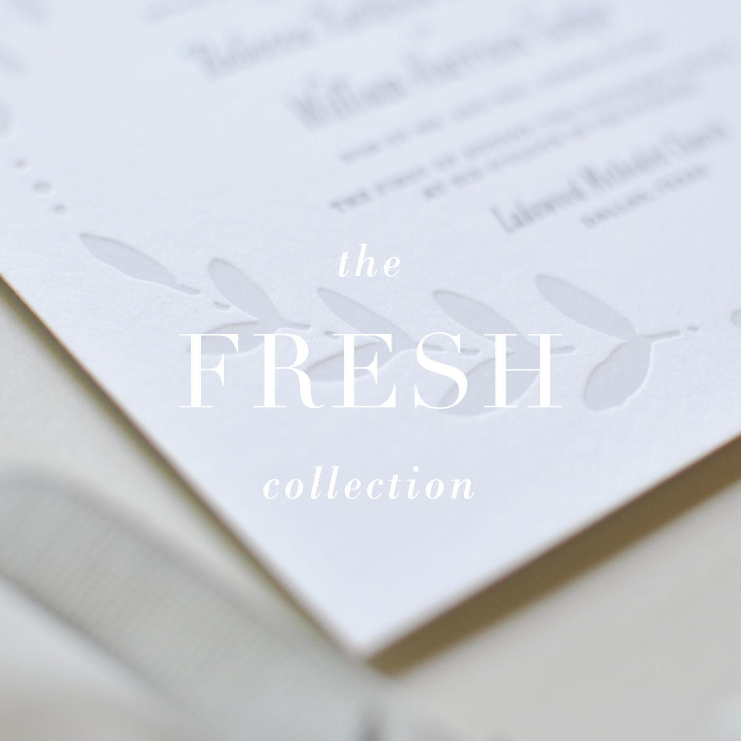 The Fresh Collection_Lauren Chism Fine Papers-01.jpg
