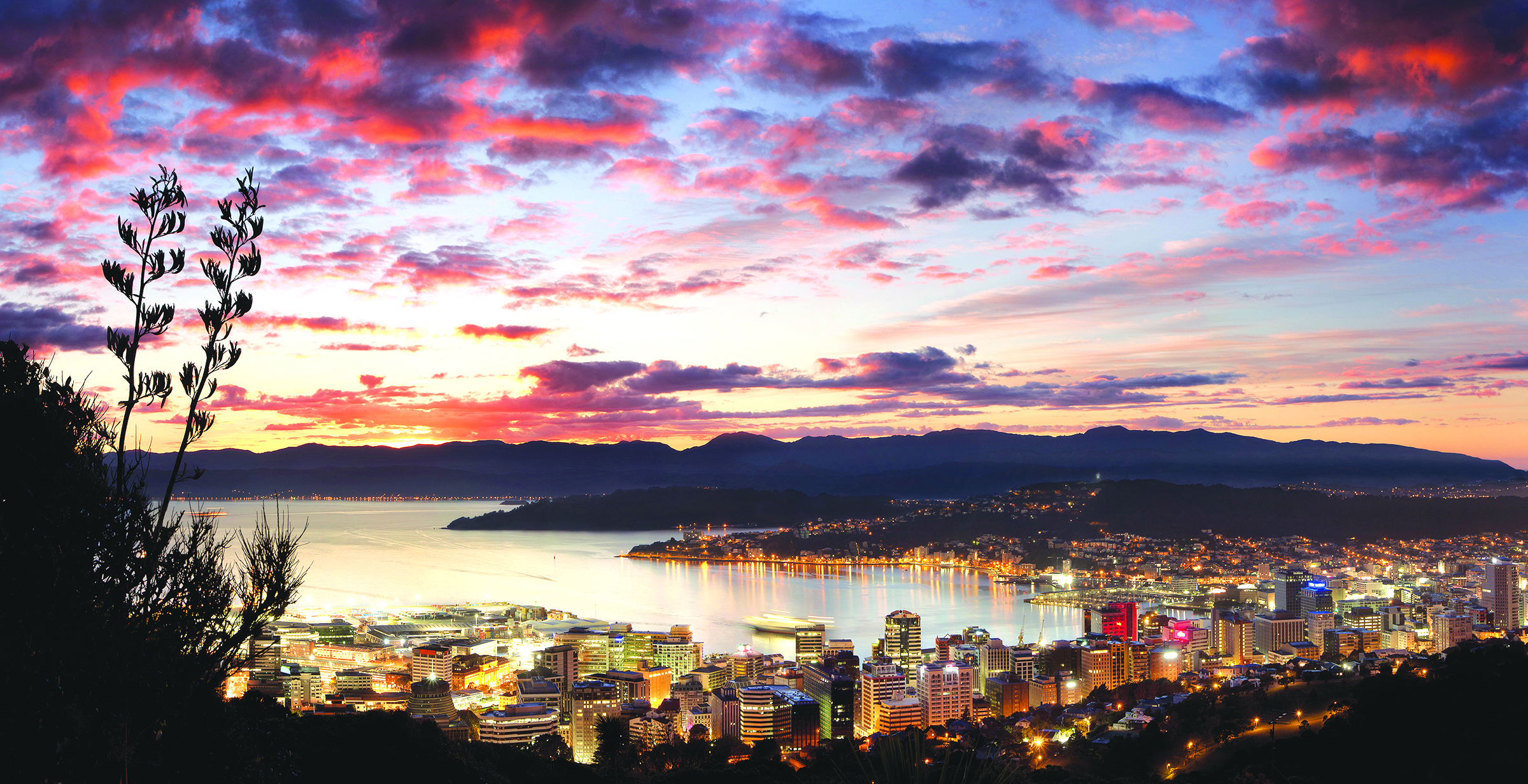 wellington-city-at-dawn-panorama.jpg