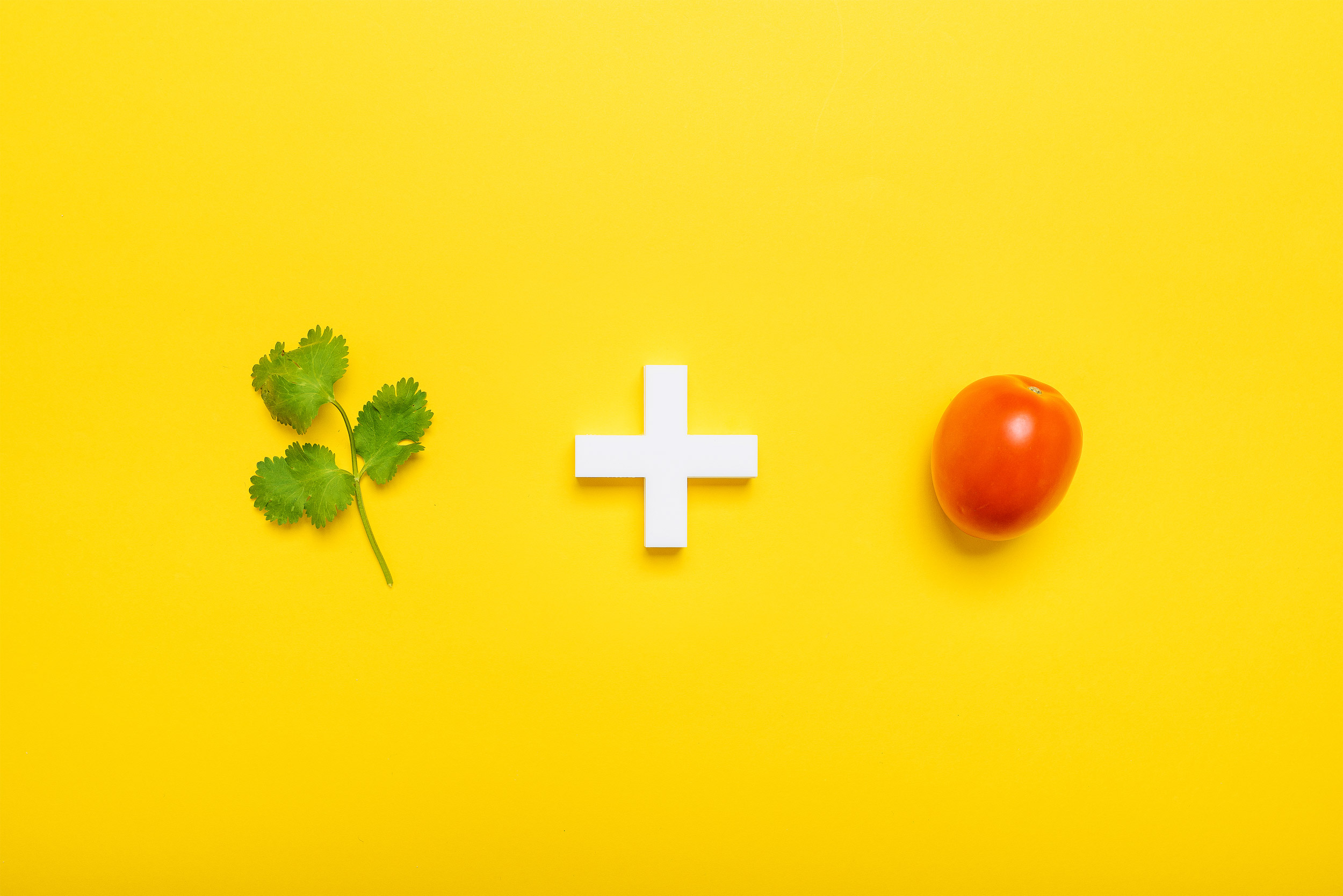 08cilantro-tomate.jpg