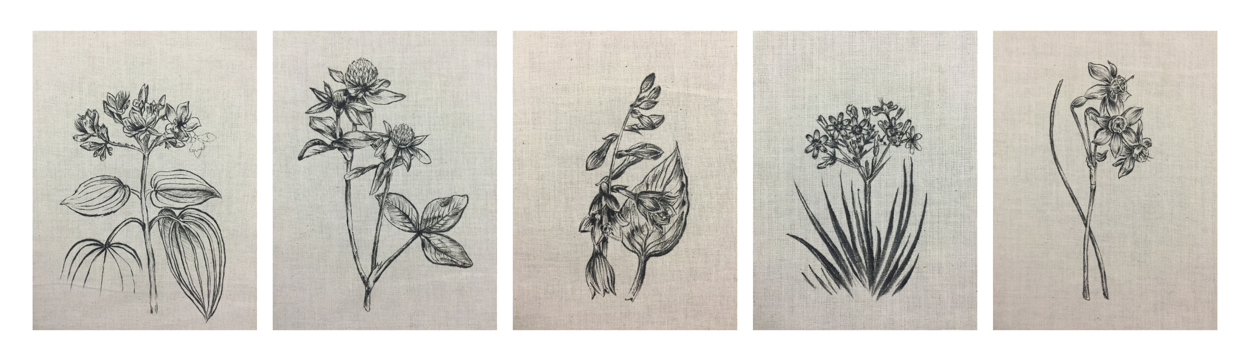 hand-drawn images on cotton, before embroidery