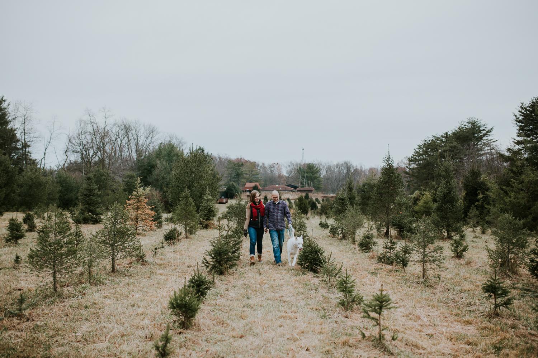 washington-dc-christmas-tree-farm-engagement-photographer