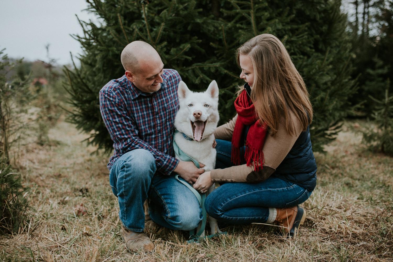 washington-dc-christmas-tree-farm-engagement-photographer+4.jpg