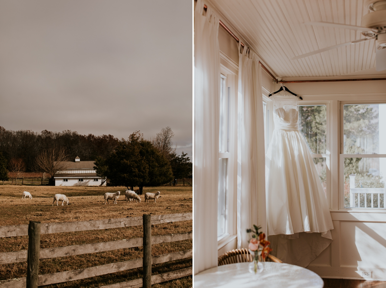 veritas-vineyard-virginia-outdoor-wedding-photography 3.jpg