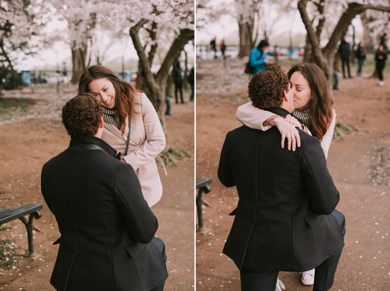 washington-dc-cherry-blossom-tidal-basin-proposal-photographer 4.jpg