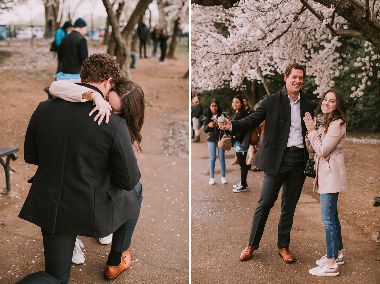 washington-dc-cherry-blossom-tidal-basin-proposal-photographer 5.jpg