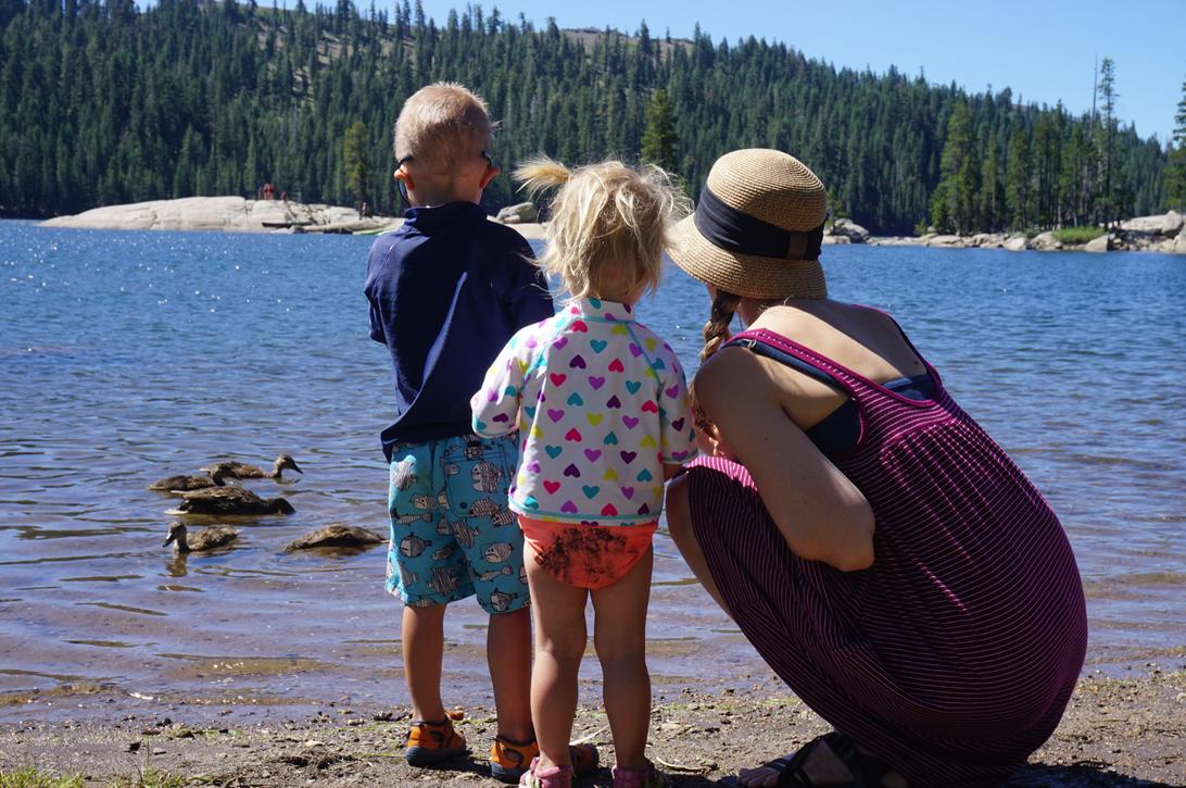 Watching some ducks at Lake Alpine