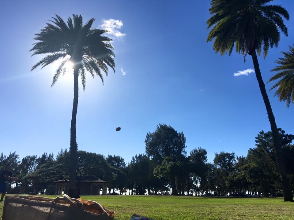 Kapiolani Park toward Waikiki Beach
