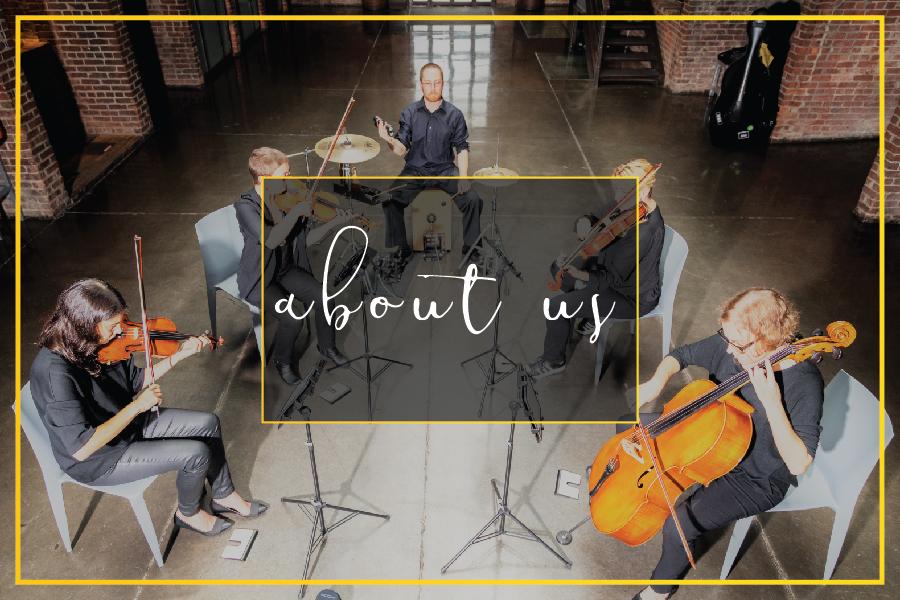 About Luminous Sounds, Inc., Long Island's premier string quartet.