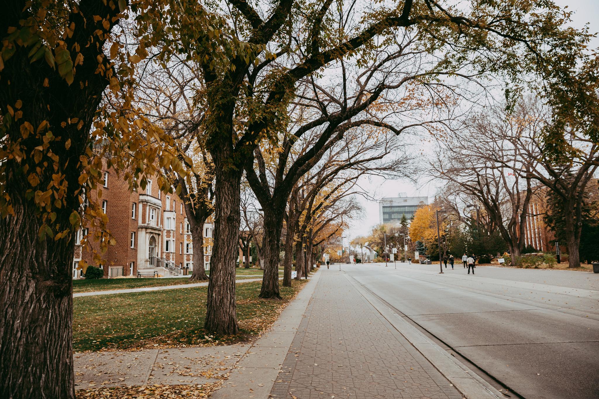 The main transit road through campus (E5/6)