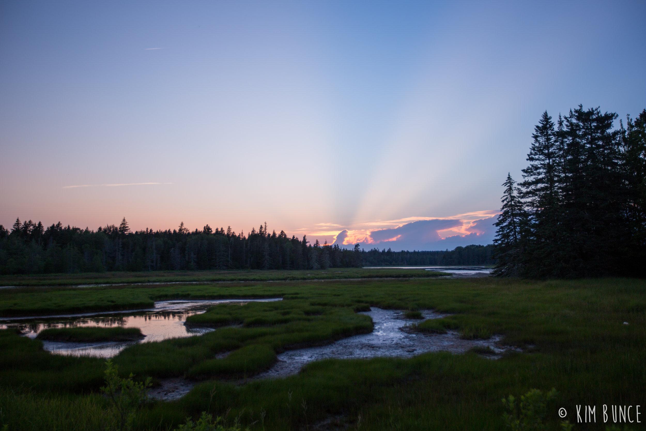 Acadia National Park - 2017
