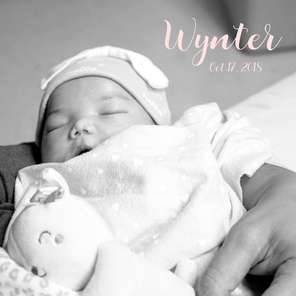 Wynter 4x4.jpg