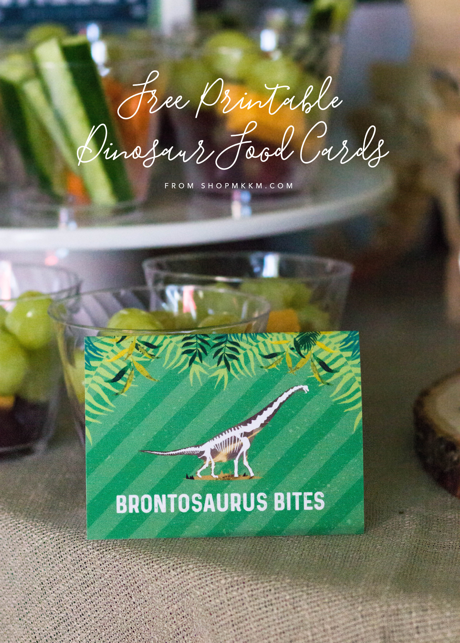 Free printable Dinosaur food cards from MKKM Designs.