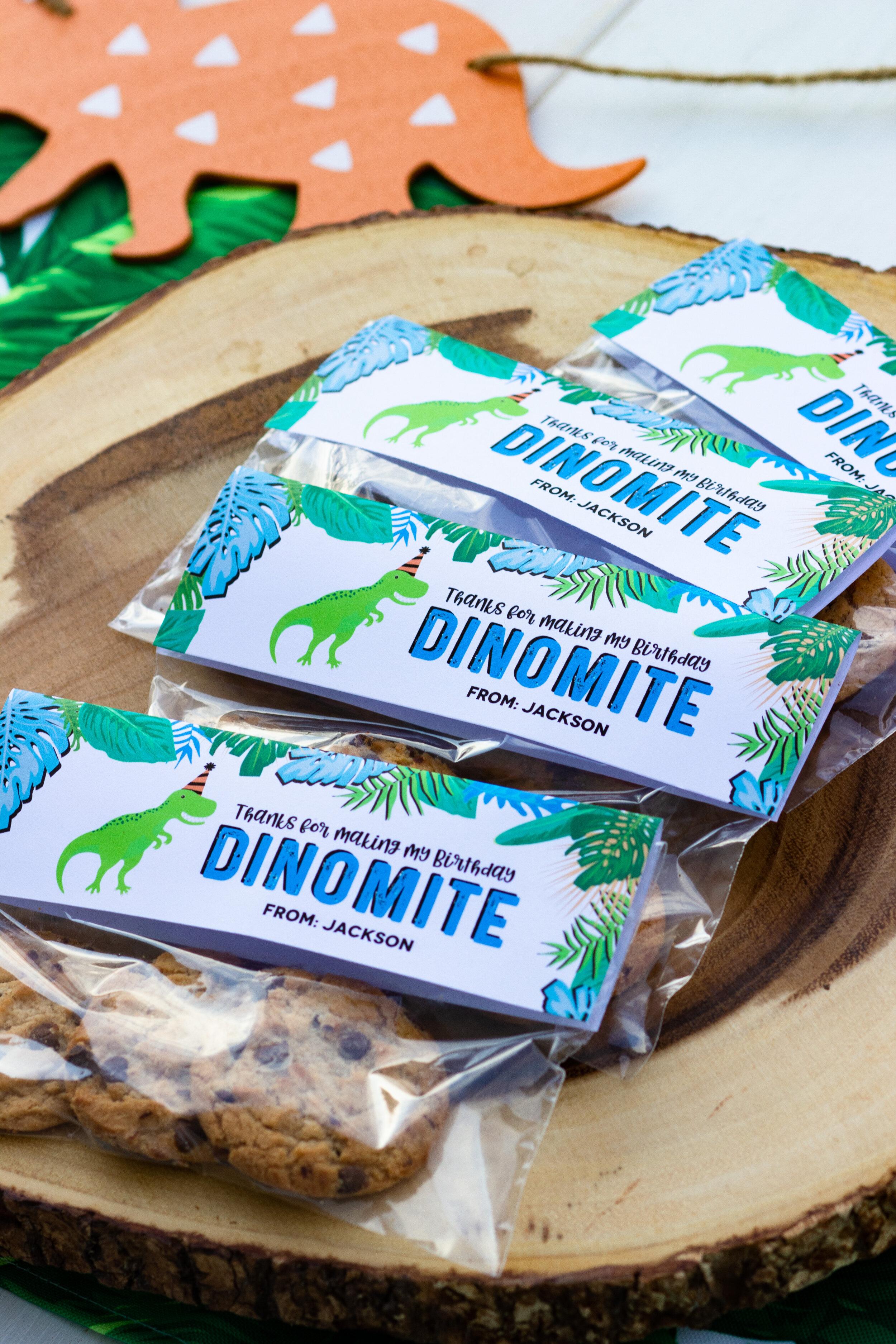 Dinomite class party favors for a dinosaur birthday // shopmkkm.com
