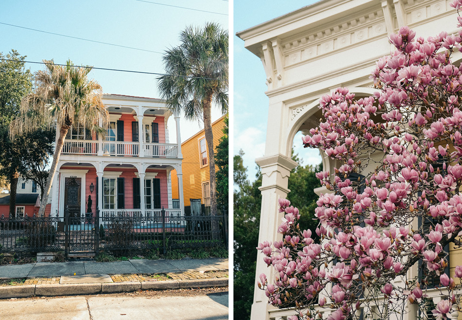Garden_District_Dog_friendly_guide_new_orleans-Duo.jpg