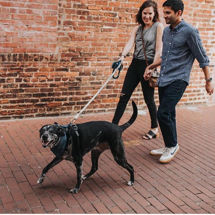 Dog_Bandana_Indigo_Chambray_SUNDAYS_Couple_Walking.JPG