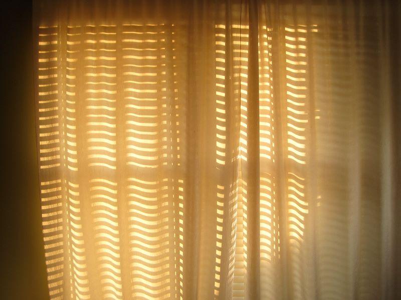 Bedroom Window - Nashville, TN