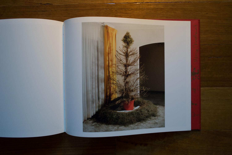 Parker Xmas Tree Bucket-16.jpg