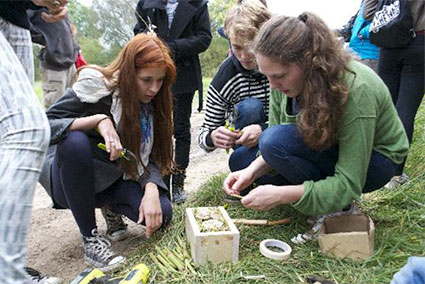 """Building an """"Insect Hotel"""""""