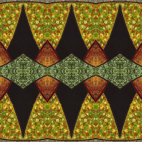 Composition African beauty III