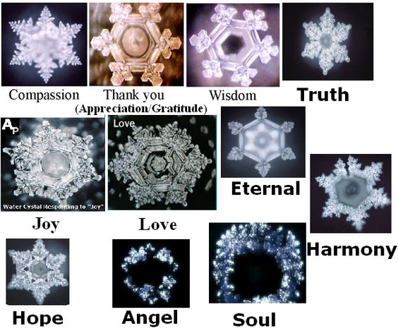 These images were produced through the work of Dr Masuru Emoto. He crystallized water and recorded the crystalline shapes after being exposed to the frequencies of various words, ideas and intentions. www.masuru-emoto.net