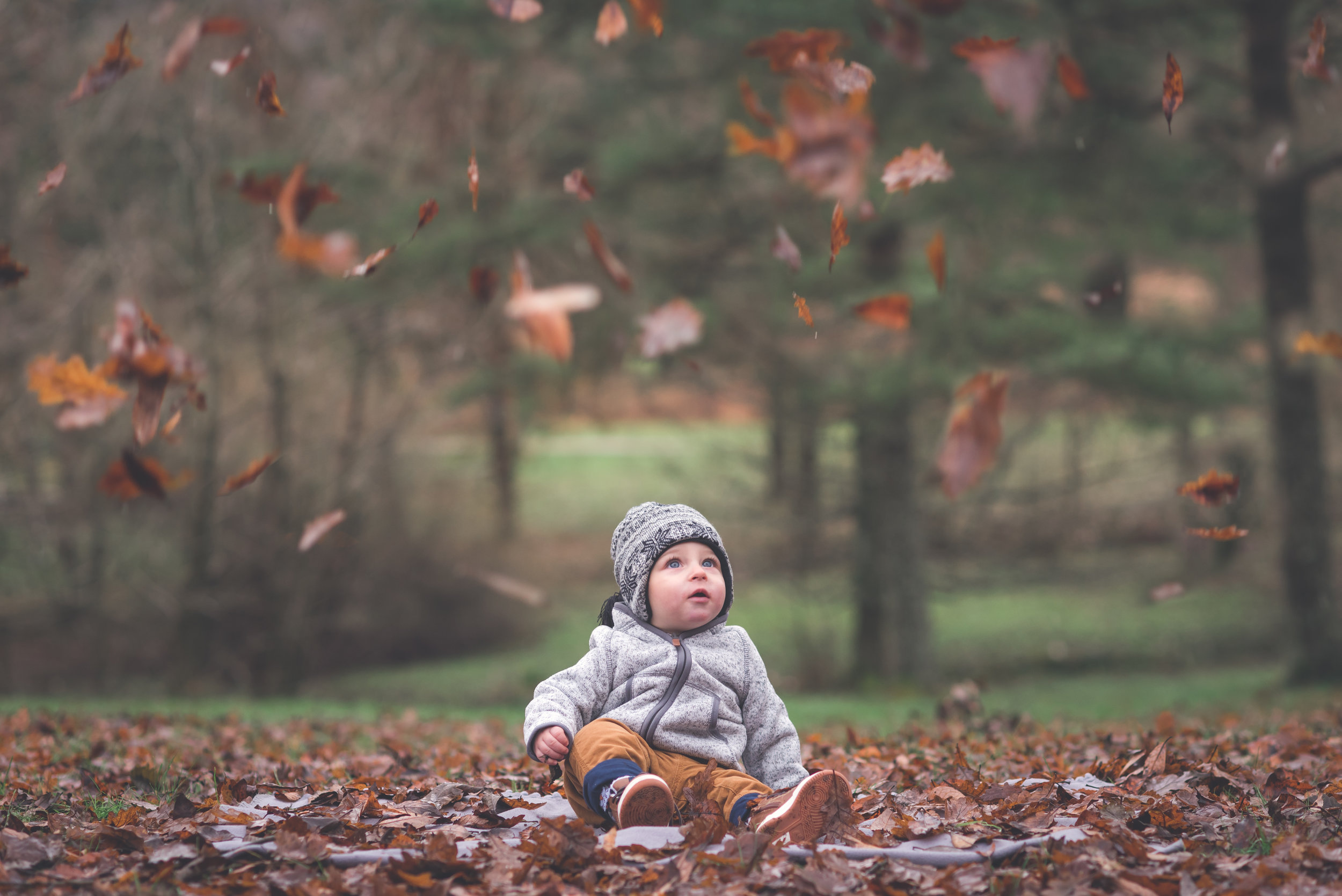 Baby in autumn leaves outdoor family photography Stavanger Familie fotografering