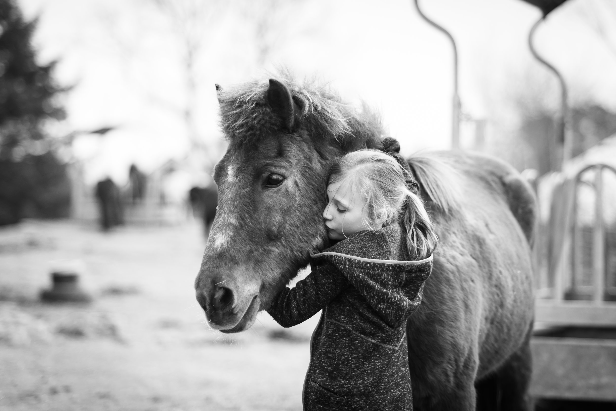 Familie fotografering Stavanger Family Girl with her horse Guillem Cheung