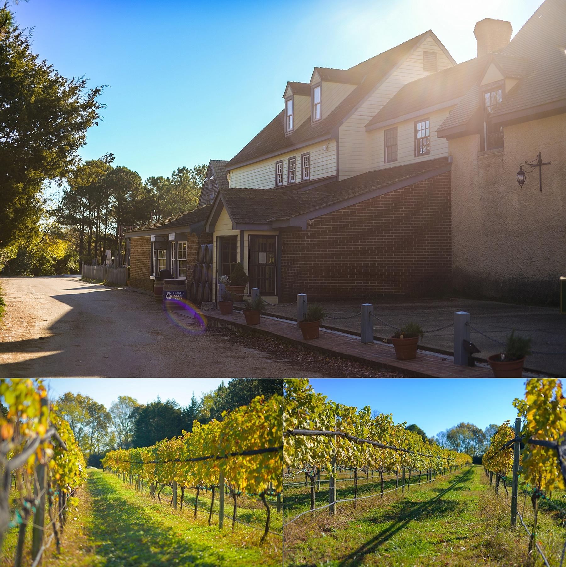 williamsburg-winery-wedding_0001.jpg
