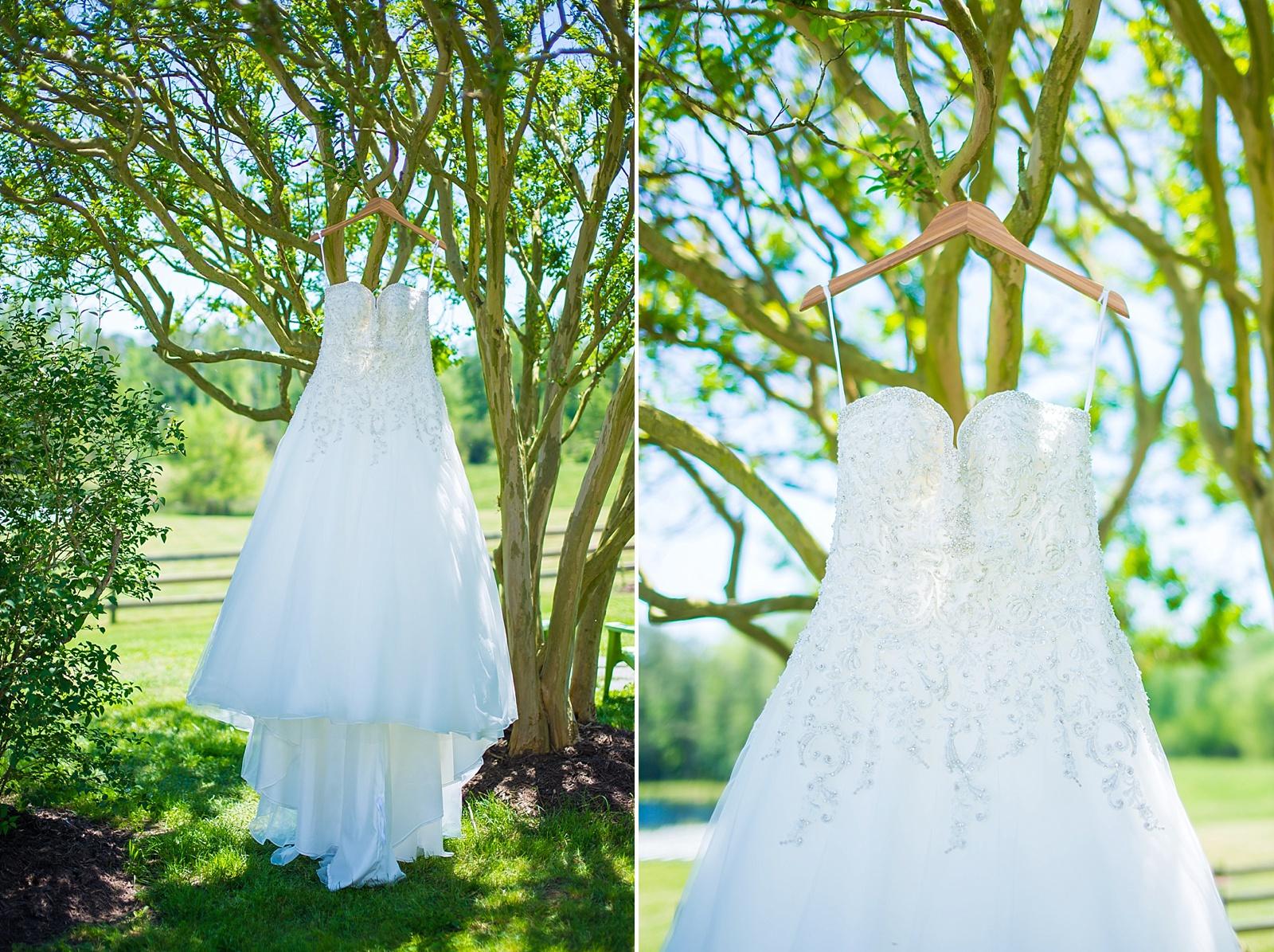 virginia-wedding_0004.jpg