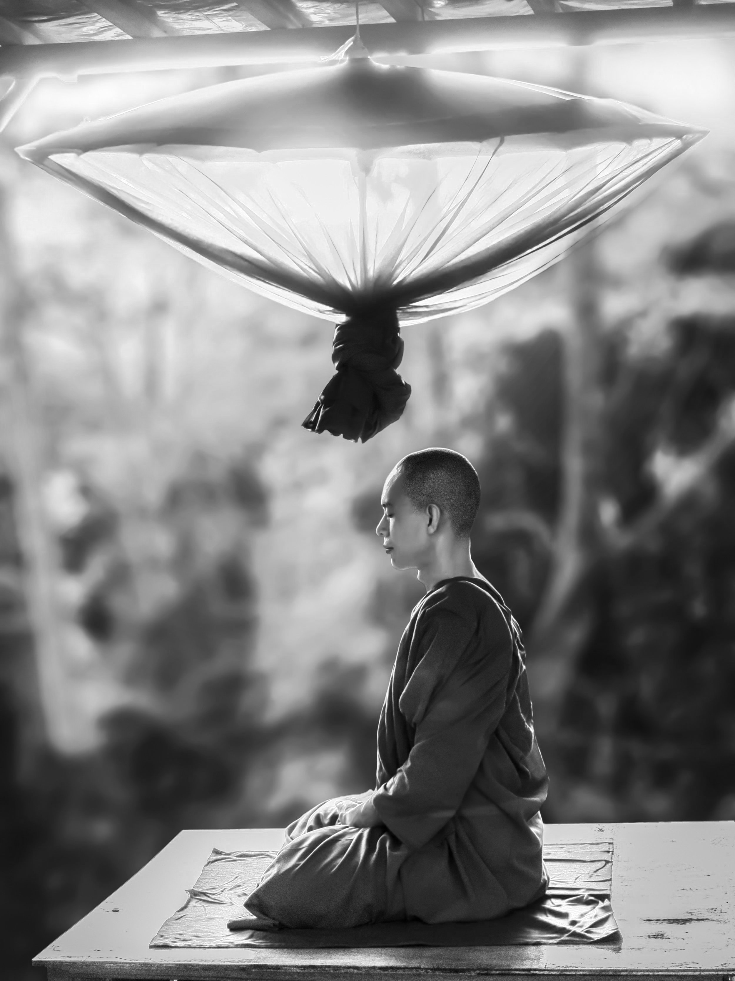 adult-asian-bald-372281.jpg
