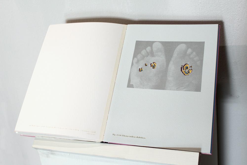 libropies.jpg