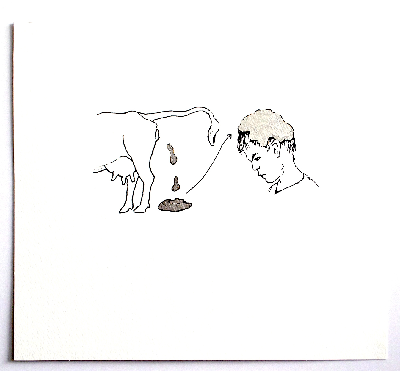 """Untar la """"muñiga"""" de vaca en la cabeza."""