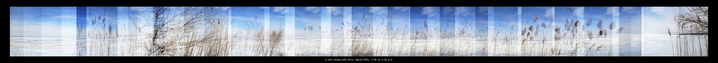 Walk Past Reeds