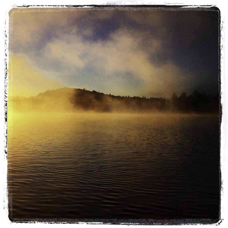 8422 Little Moose Mist 7.5.jpg